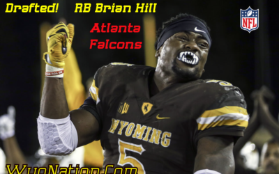 Brian Hill: NFL Running Back